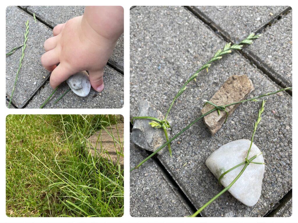 Grasbänder – Tischdekoration mit Steinen