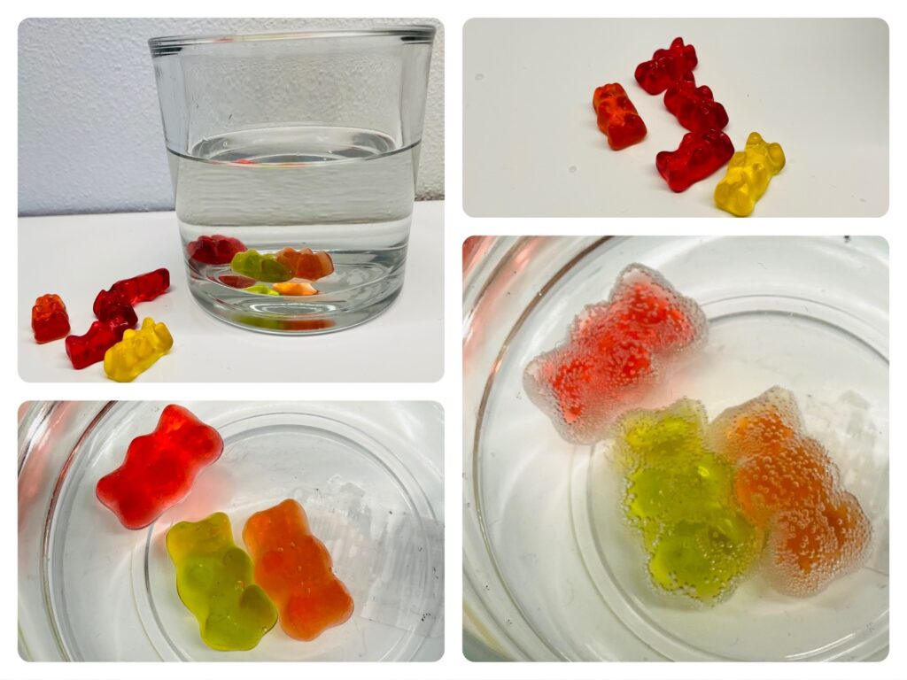 Experiment Gummibärchen – Geister