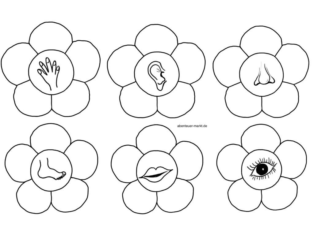 Spiel – Blumen für die Sinne