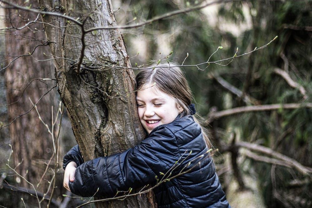 Waldspiele – Suchspiele im Wald