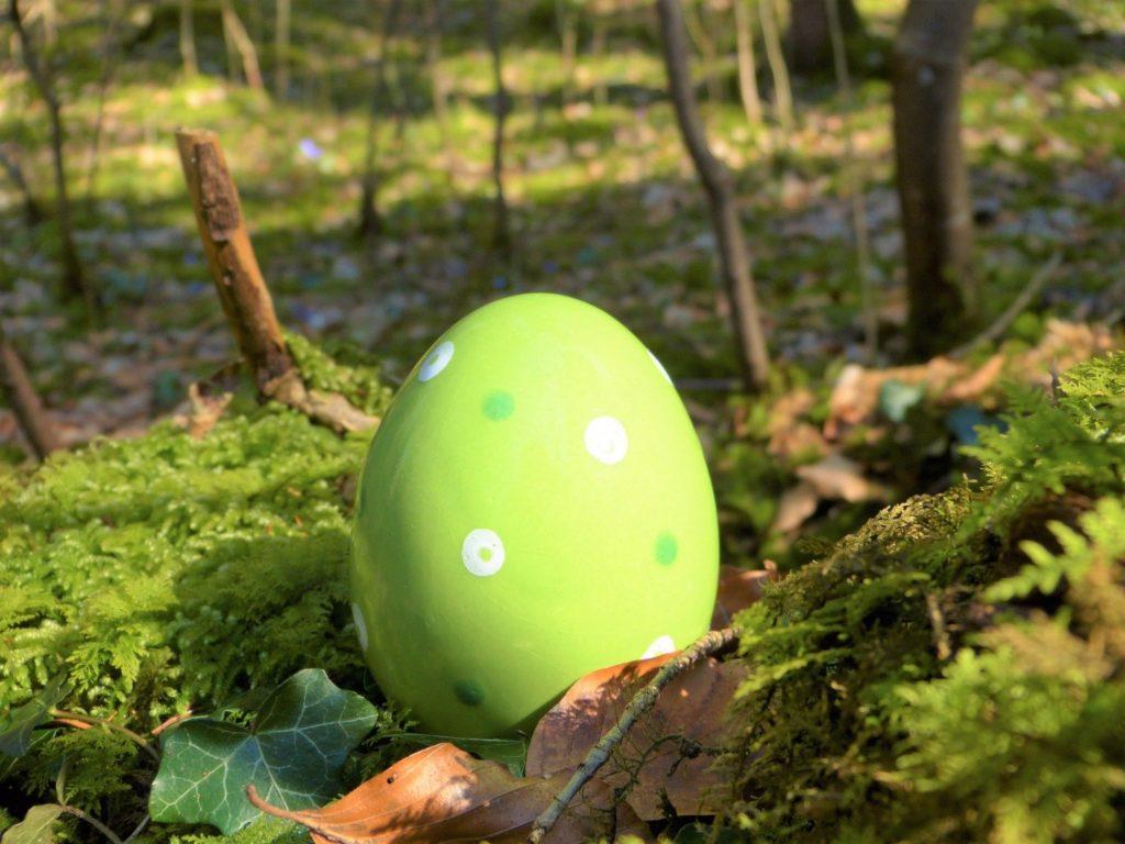 Osterspaziergang mit Eiersuche