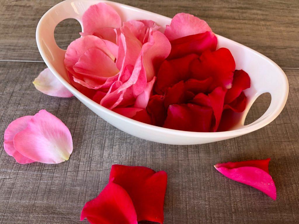 Rosenblütenblätter ernten und trocknen