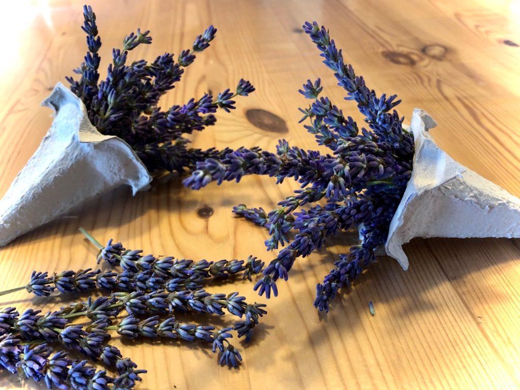 Lavendel- Dufttüte (im Eierkarton)
