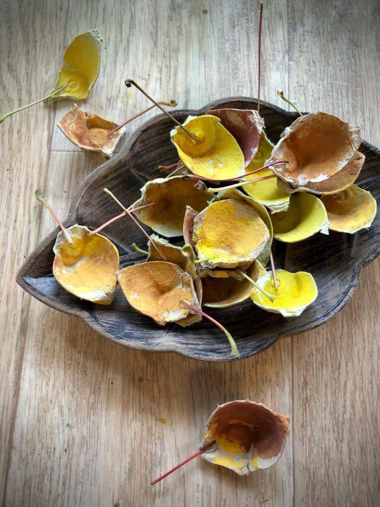 Blätter basteln – aus Eierkarton